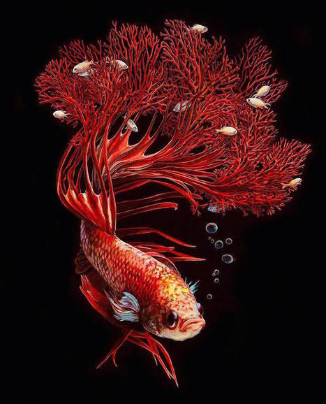 Hyperrealistic Depictions of Fish Merged With Their Coral Environments by Lisa Ericsson... | Art for art's sake... | Scoop.it