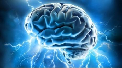 Un cerveau humain qui commande un autre cerveau humain, c'est possible | Digital marketing | Scoop.it