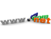 Webhut Freelancer | website developing | Scoop.it