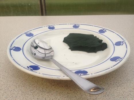Association Spiruvie CIAN | Mailforgood | La Spiruline : une algue très douée... pour 1 kg de protéines | Scoop.it