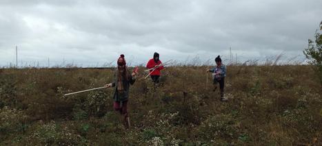 DePaul students delve into nature with Chicago Wildsounds | DESARTSONNANTS - CRÉATION SONORE ET ENVIRONNEMENT - ENVIRONMENTAL SOUND ART - PAYSAGES ET ECOLOGIE SONORE | Scoop.it