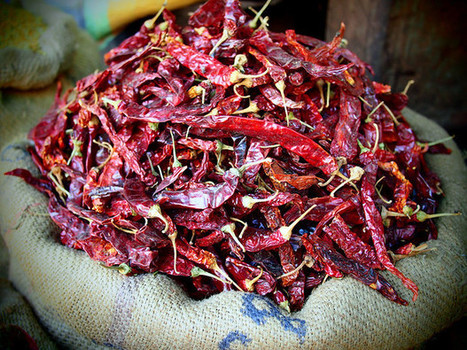 Chili Peppers Spice of Life Brought to us by the Portuguese | Lisbon Lifestyle | Scoop.it