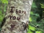 Saying 'I Love You': Romantic Ideas For Relationships | Gina Senarighi | YourTango | Relationships | Scoop.it