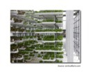 Vertical Farming coming to Memphis | Local Economy in Action | Scoop.it