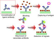 '#monoclonal antibody' in Top Selling Monoclonal