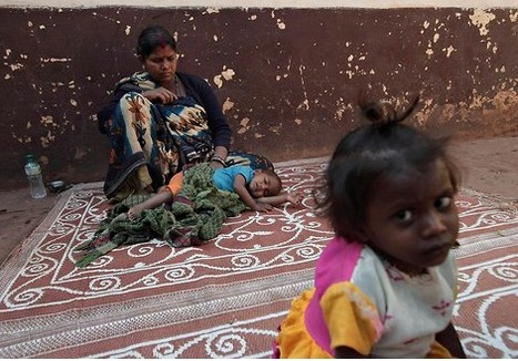 India leads world in deaths of children under five | GTAV AC:G Y10 - Geographies of human wellbeing | Scoop.it