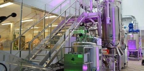 Fermentalg s'attaque au biokérosène et à l'alimentation | Chimie verte et agroécologie | Scoop.it