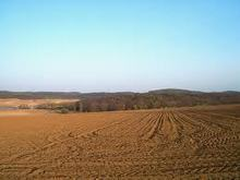 Farming News - World Soil Day highlights need to protect soils #erosion #environment   Messenger for mother Earth   Scoop.it