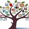 Online Marketing - Nederland