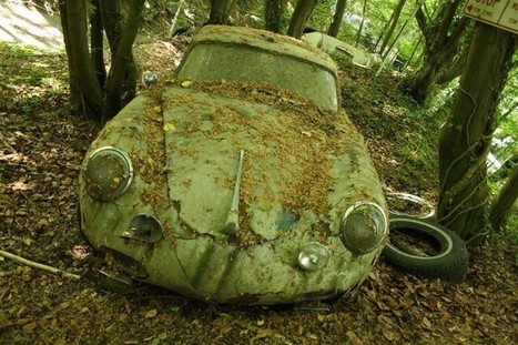The Vintage Supercars Rotting away in a Forest (and that's how the owner wants it) | Vintage and Retro Style | Scoop.it