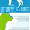 Pet info