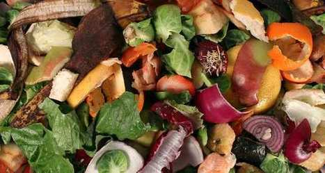 Le compost issu d'ordures ménagères va avoir son label qualité, Terrom | Agriculture urbaine, architecture et urbanisme durable | Scoop.it