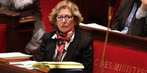 Université: débats houleux en perspective sur la loi Fioraso | La vie des SHS : veille recherche et enseignement | Scoop.it