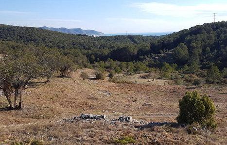 Actuacions per preservar els Colls i Miralpeix   #territori   Scoop.it