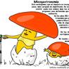 Micogastronomia
