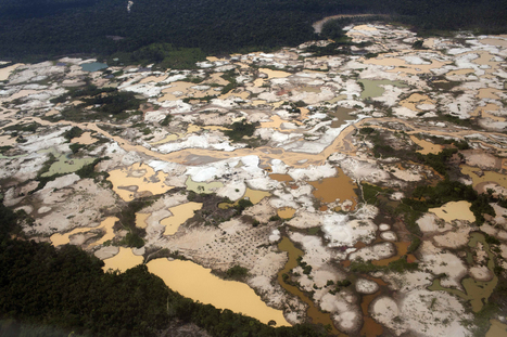 Gold rush sparked by global financial crisis devastates Amazon   Regional Geography   Scoop.it