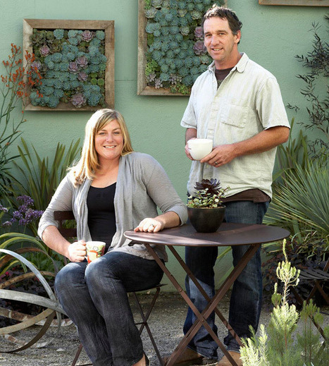 Make a Living Succulent Picture | Landscape Design DIY, Tips, and Best Practices | Scoop.it
