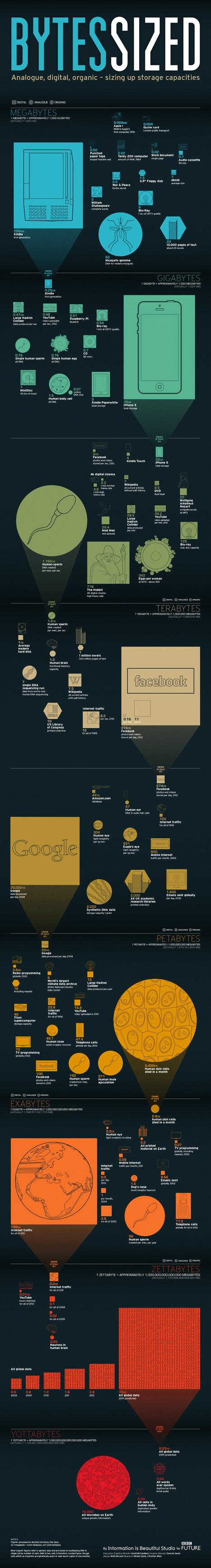 Bytes Sized: Information Storage, Visualized [infographic] | visual data | Scoop.it
