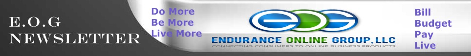Endurance Online Group