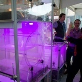 These glowing indoor garden boxes are the future of urban agriculture - Digital Trends   Sustainable Communities   Scoop.it
