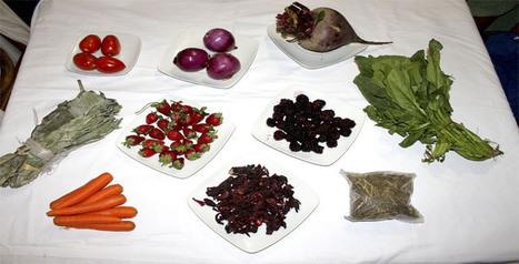 D.I.Y. tintes naturales | make it & wear it | Agricultura ecológica y tintes naturales | Scoop.it