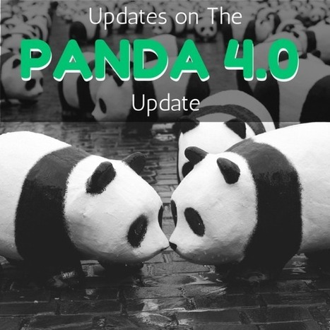 The Latest on The Panda 4.0 Update | Digital-News on Scoop.it today | Scoop.it