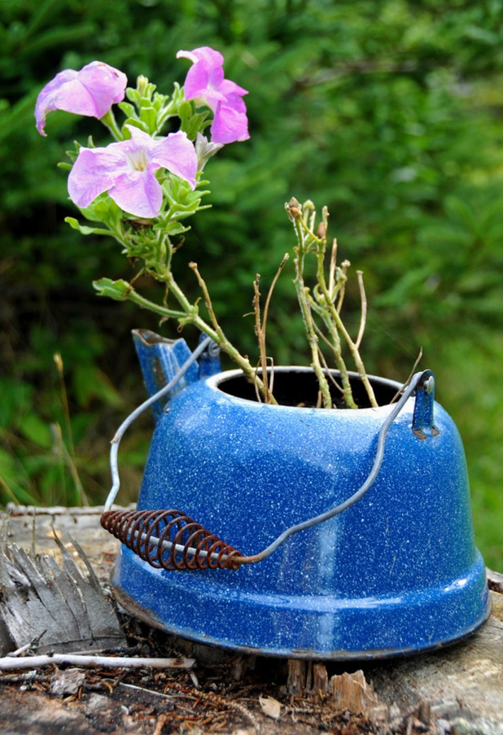 Clever Plant Container Ideas | Container Gardening | Scoop.it