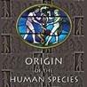 M.T. Human Origin