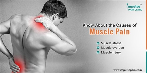 who is the doctor for muscle pain