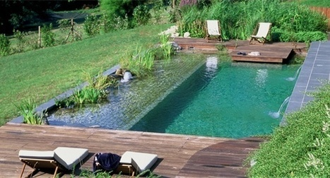 Piscine In Maison Ossature Bois Ecologique Scoop It