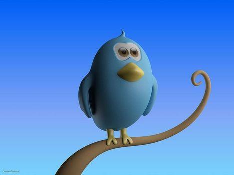 Please RT Eh, @Twitter, #pastoucheauhashtag   Tout savoir sur Twitter   Scoop.it