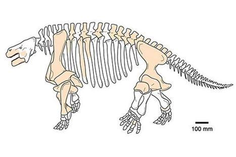 Los reptiles fósiles más feos dom...