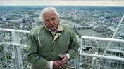Planet Earth II: Attenborough's epic sign off - BBC News | Sustainable Tourism | Scoop.it