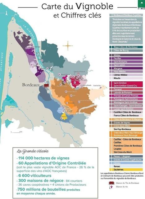 Les Routes du Vin de Bordeaux : oenotourisme dans les vignobles | Revue de presse Pays Médoc | Scoop.it