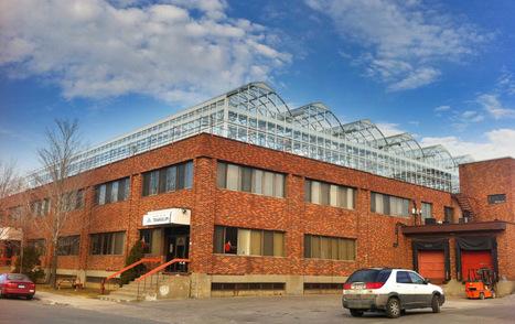 La première serre commerciale sur un toit de Montréal, et à Paris ? | Québec, entre tradition et modernité. | Scoop.it