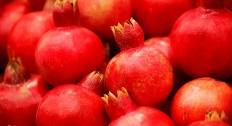 Top 10 great reasons to love the pomegranate | Jewish Education Around the World | Scoop.it