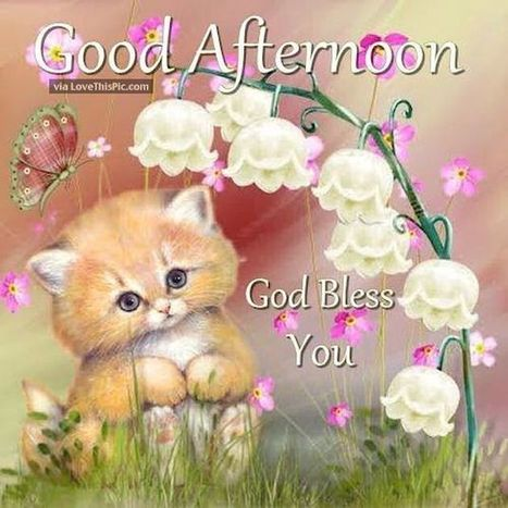 Good afternoon quotes for love friends i good afternoon quotes for love friends images pictures photos good morning images sms good morning wishes for friends messages photos m4hsunfo