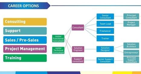 SAP Placement Process, Orion SAP Training Insti