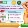 Lose Undesired Body Pounds and Look Great!