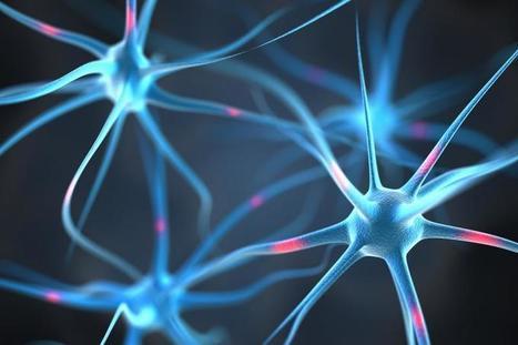 Brain Power | Biomedical Beat | Scoop.it