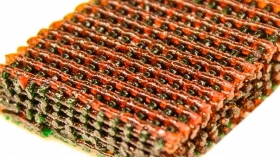 3D Printing of Cartilaginous Parts | 3D printing | Scoop.it
