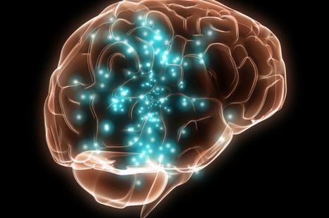 Apprendre une nouvelle langue renforce le cerveau à n'importe quel âge   APMP NEWS   Scoop.it