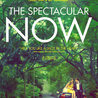 Watch The Spectacular Now Movie Online