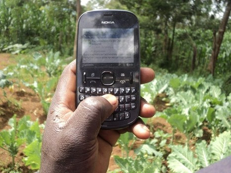 Young farmers turn to social media to adapt to climate change   Agriculture,Urban Farming,Food security,Agriprenuership, Youth, Ag Journalism and  Online Ag media   Scoop.it