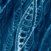 Human Gene Patenting: When Companies Own Your DNA | leapmind | Scoop.it