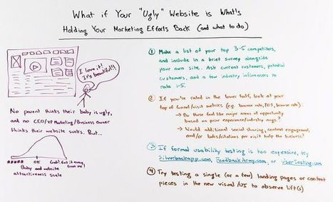 What if Your Ugly Website is Holding Back Your Marketing Efforts? - Whiteboard Friday | SEO Tips, Advice, Help | Scoop.it