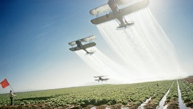 Pesticide linked to Alzheimer's | The Barley Mow | Scoop.it
