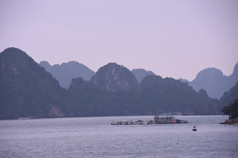 04/01/2017: Aquaculture market in Vietnam to grow five percent by 2020 | Global Aquaculture News & Events | Scoop.it
