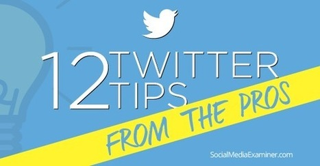 12 Twitter Marketing Tips From the Pros . . . | Studium Media - Musings | Scoop.it