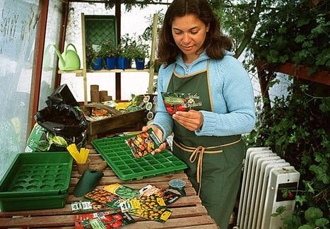 Que faire en février au jardin ? | jardins et développement durable | Scoop.it